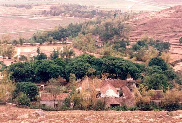 Di tích chùa Hàm Long